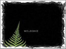 Green Fern Welcome 2