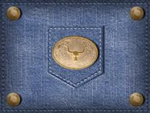 blue-jeans-bull2