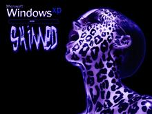 Windows XP Skinned