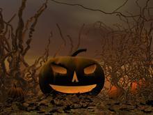 Gnarley Pumpkin Patch