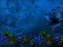 BlueBloodware WS