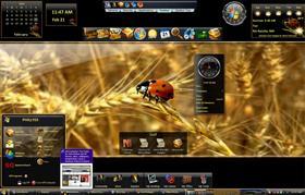 Vista Bug (TM Suite)