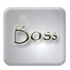 Boss Button