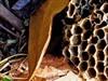 Wasp  by: DrJBHL