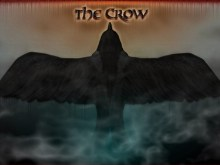 CROW_wall