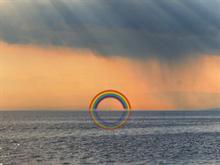 rainbowDock