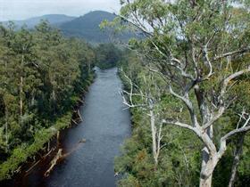Huon River 5