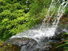 Waitakere Waterfall