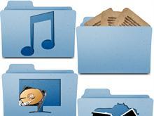 Leopard Folders (custom)