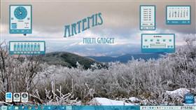 Artemis Multi Gadget
