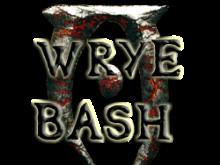 Oblivion: Wrye Bash
