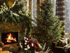 Christmas Scene by: AzDude