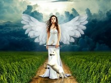 Fantasy Angel 2pk