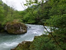 Georgia River