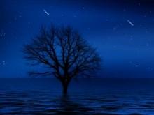 Lake Night Stars