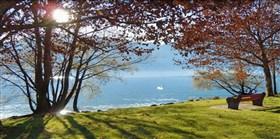 Autumn Impressions Lago Maggiore