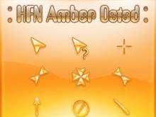 HFN Amber Ostad