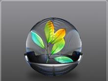 Adobe Suite CS2 2808