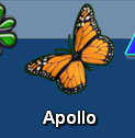 Apollo Dock Icon