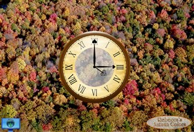 Rebecca's Autumn Colors