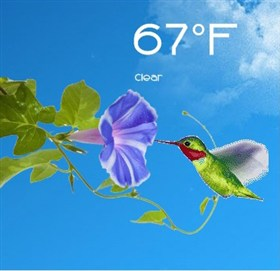 Animated Hummingbird Weather for Rainmeter