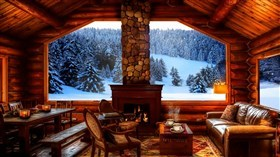 Fireplace View